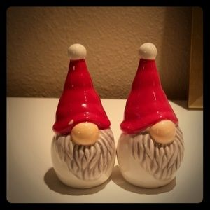 Salt and pepper gnome set